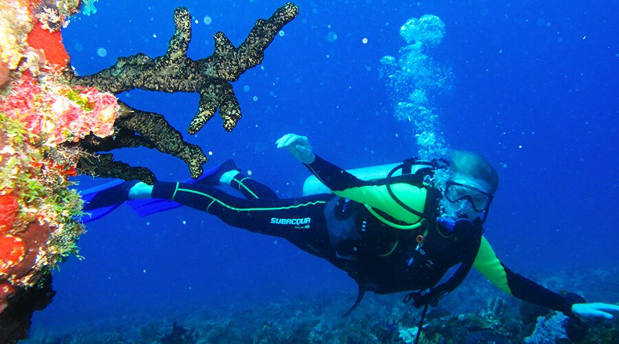Advanced Open Water Diver Certification In Cancun